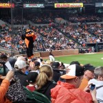 galaxy-s5-oriole-bird-on-dugout-2