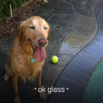 Google Glass voice activated viewfinder photos
