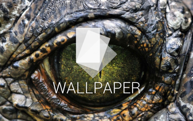 walls dino