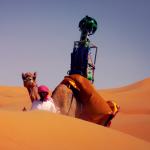 Google Street View Camel