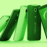 Green Nexus 6