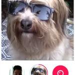 Skype Qik new screenshots