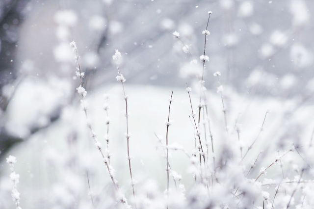close snow