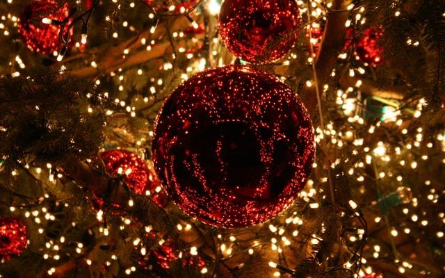 christmas-lights-tree