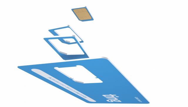 Ting breakaway SIM card