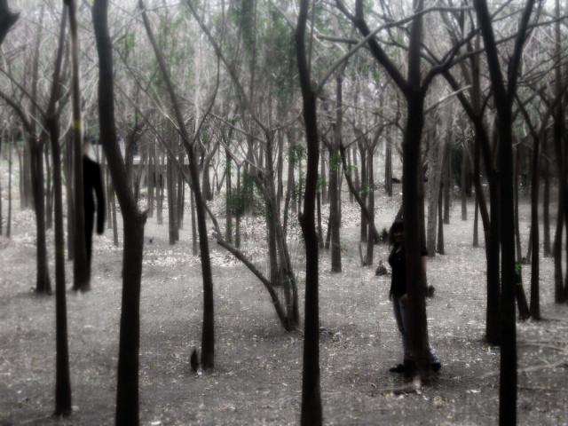 slenderman_in_the_forest_by_shizuriiku-d64y5q9