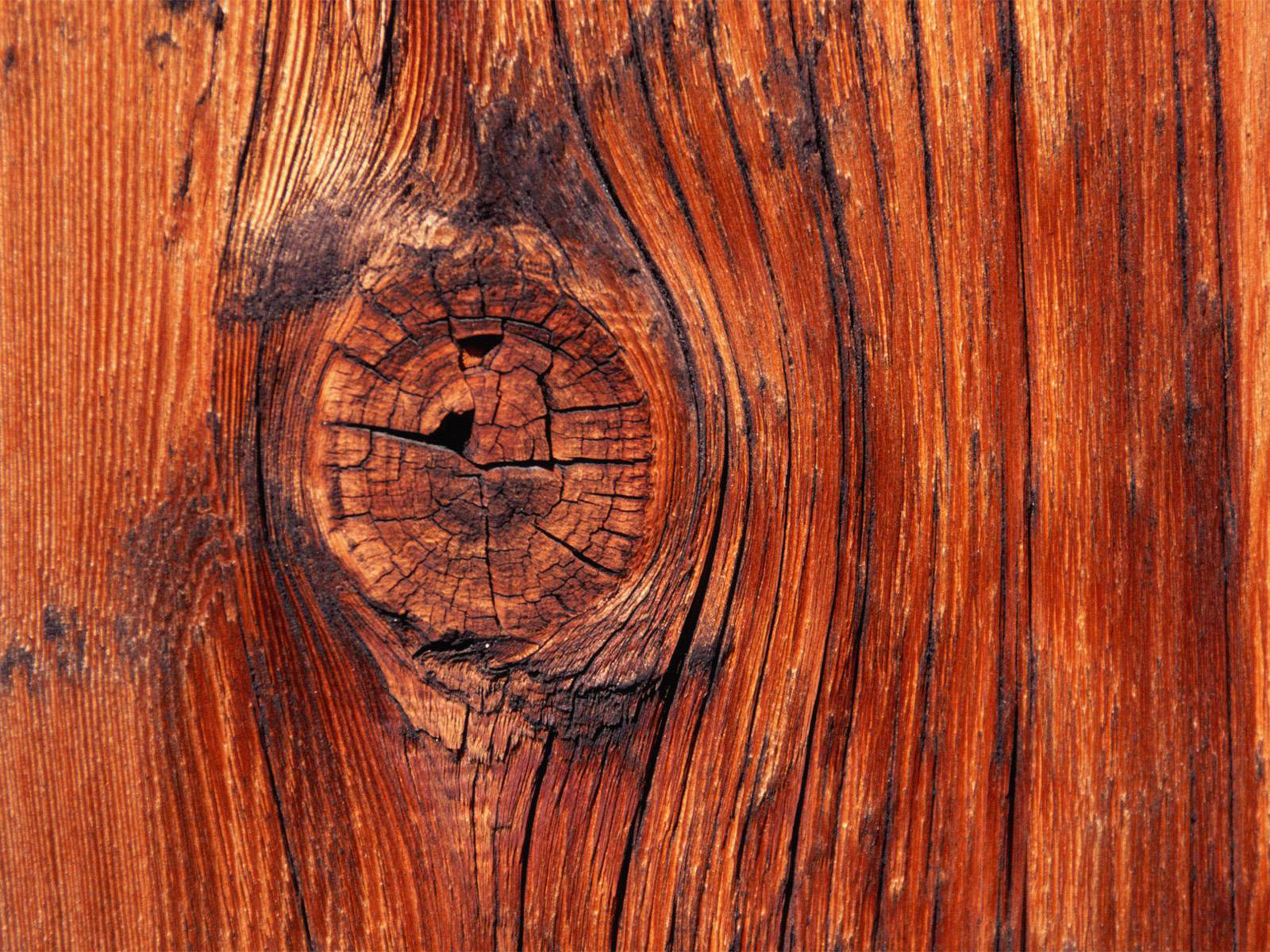 Wood Wall Paper android wallpaper: knock on wood