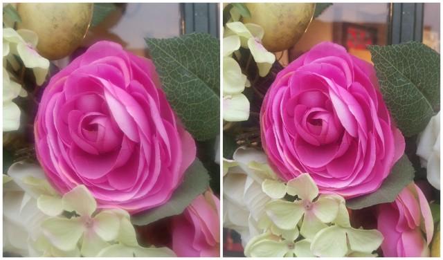 M9-Photo-Comparison-Flowers