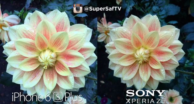 Sony Xperia Z5 vs Apple iPhone 6S Plus