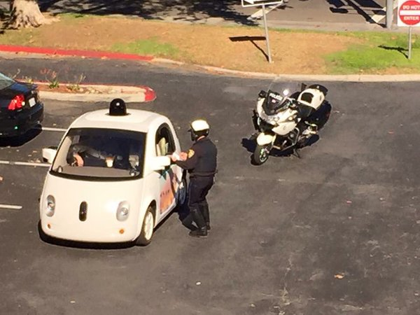 Cats Driving Cars And Getting Pulled Over : Google s self driving car gets pulled over for too