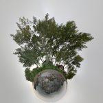 final_camera-21-photosphere