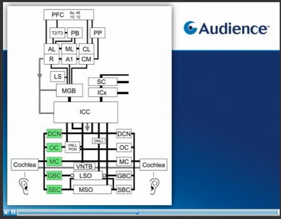 audience-processor