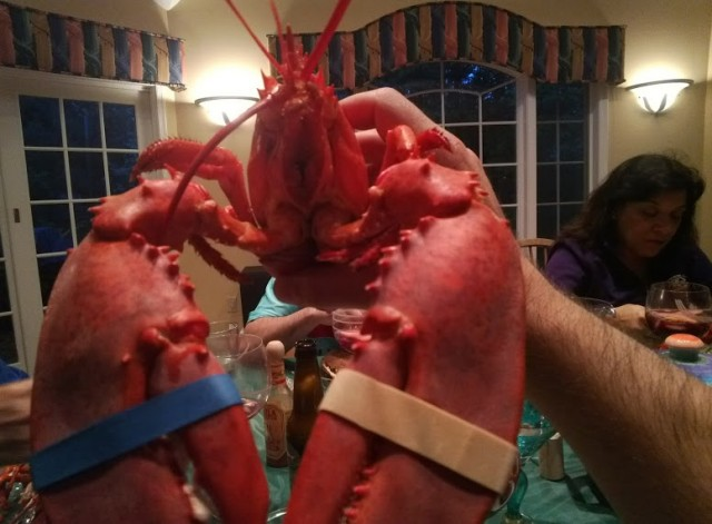 Google Glass Lobster