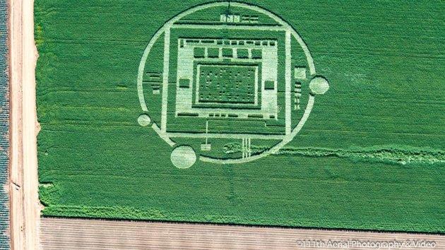 salinas-nvidia-crop-circle