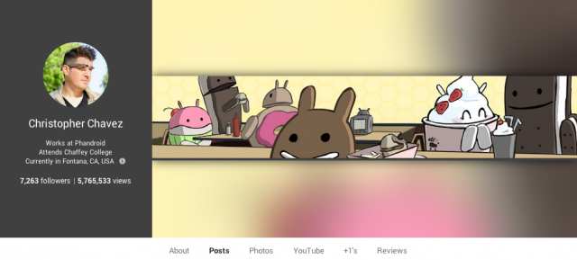Google Plus page views