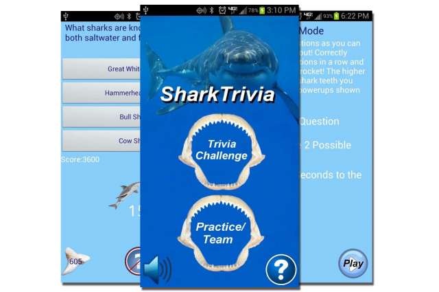 shark-trivia