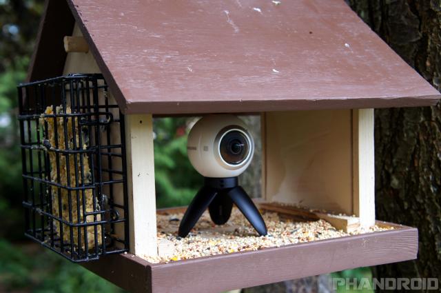 I put a 360-degree camera inside of a bird feeder